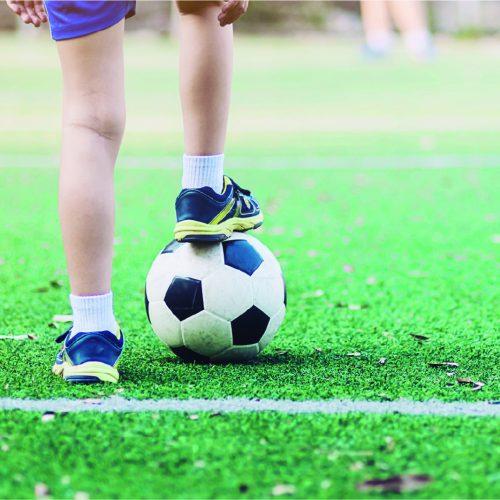 Sedentarismo y actividad física: Cómo impactan en la salud